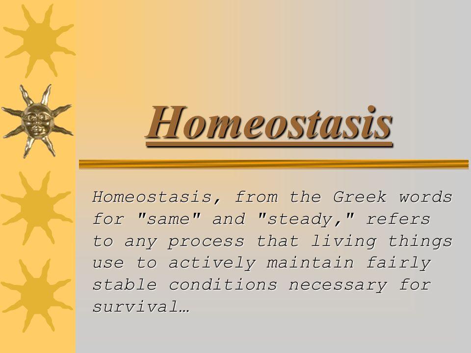 A2 BIOLOGY Homeostasis Assignment BY SAMIR BABALDIN