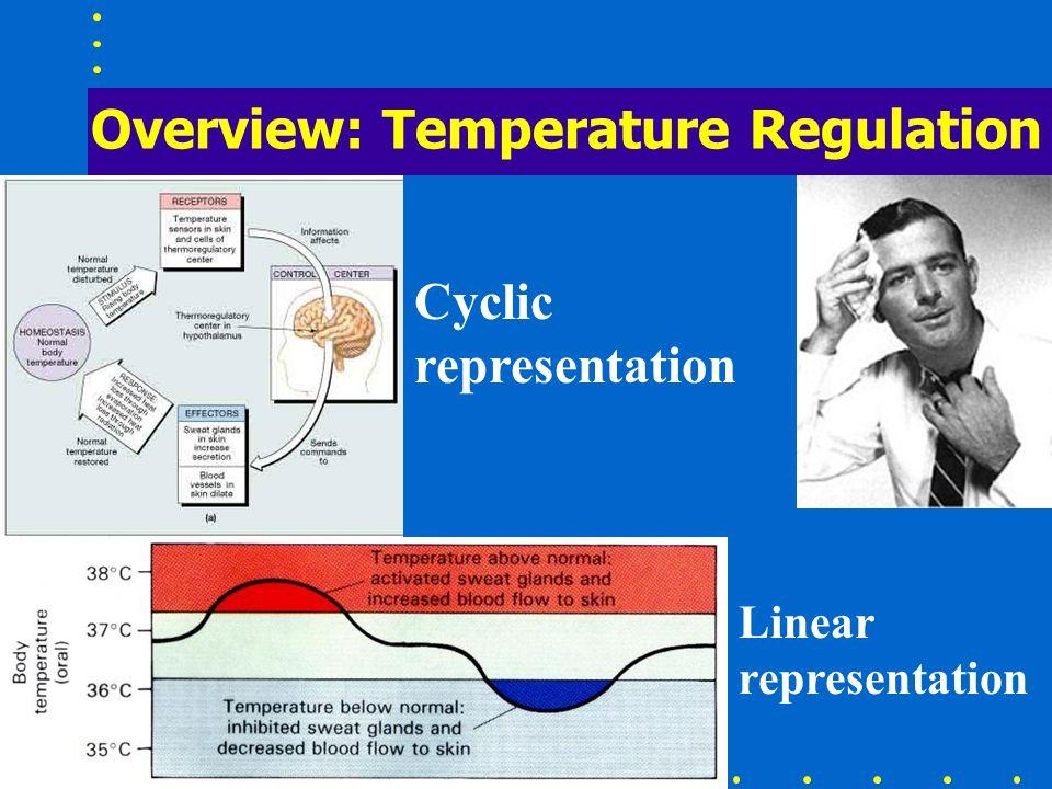 Overview: Temperature Regulation Cyclic representation Linear representation