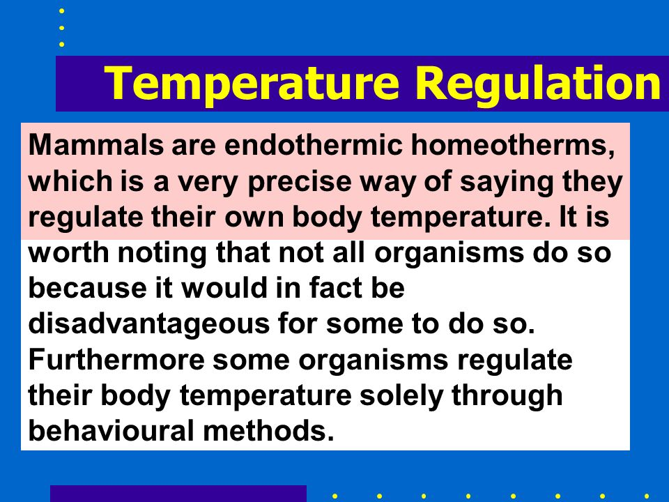 Mammals are endothermic homeotherms, which is a very precise way of saying they regulate their own body temperature. It is worth noting that not all o