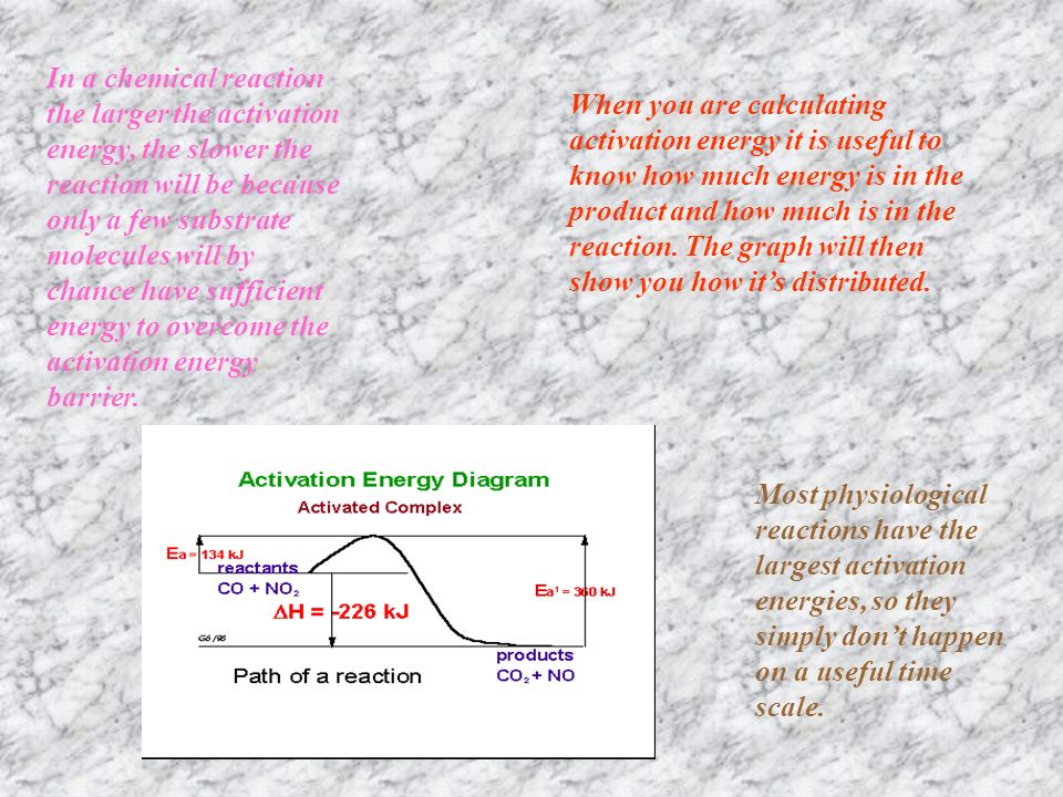 The way enzymes work can also be shown by considering the energy changes that take place during a chemical reaction.