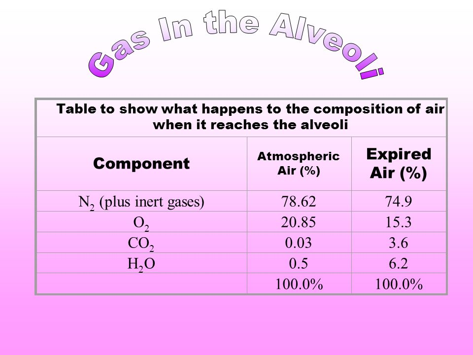 Component Atmospheric Air (%) Expired Air (%) N 2 (plus inert gases)78.6274.9 O2O2 20.8515.3 CO 2 0.033.6 H2OH2O0.56.2 100.0% Table to show what happens to the composition of air when it reaches the alveoli