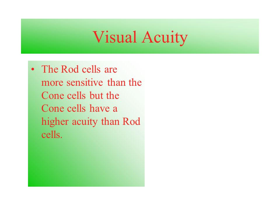 Visual Acuity The Rod cells are more sensitive than the Cone cells but the Cone cells have a higher acuity than Rod cells.