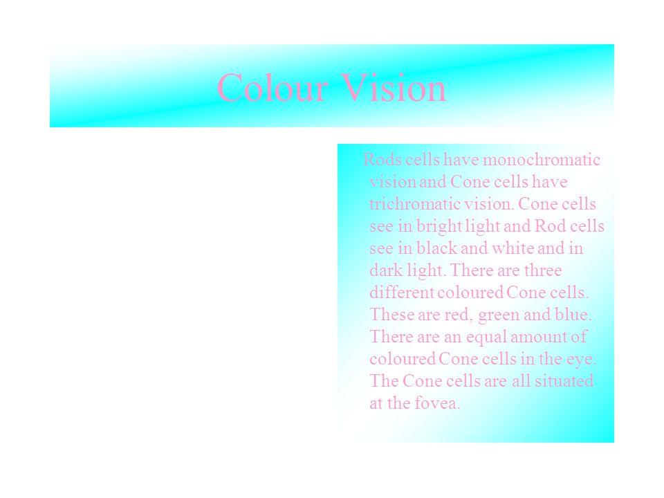 Colour Vision Rods cells have monochromatic vision and Cone cells have trichromatic vision. Cone cells see in bright light and Rod cells see in black