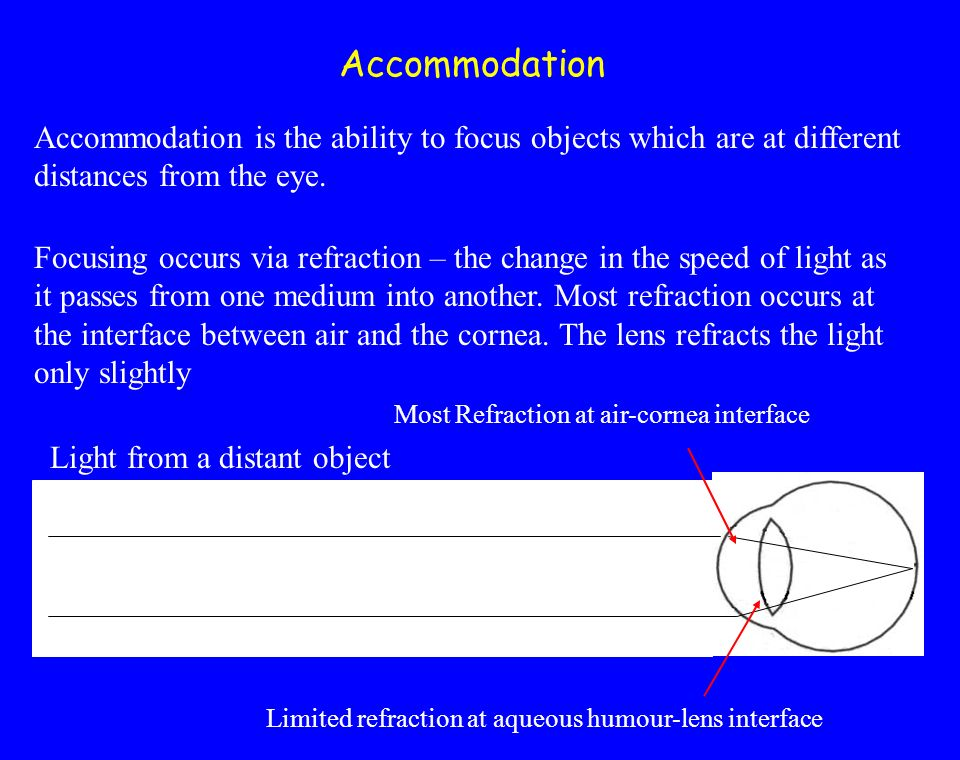 Accommodation Accommodation is the ability to focus objects which are at different distances from the eye.