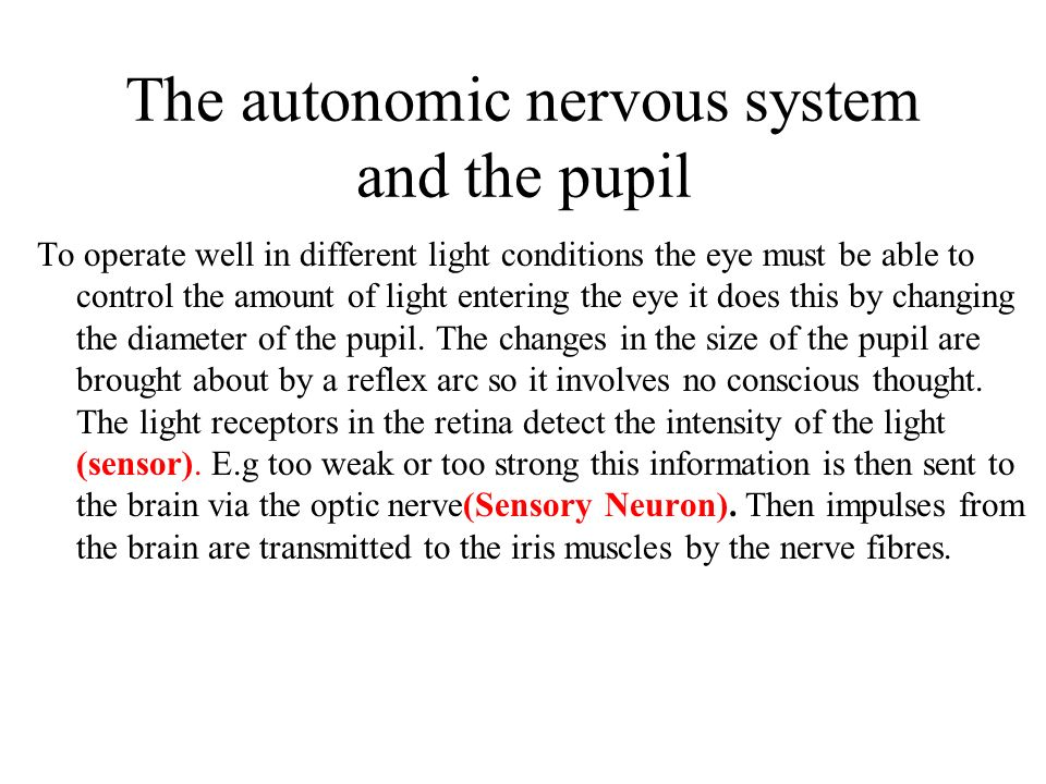 The autonomic nervous system and the pupil To operate well in different light conditions the eye must be able to control the amount of light entering