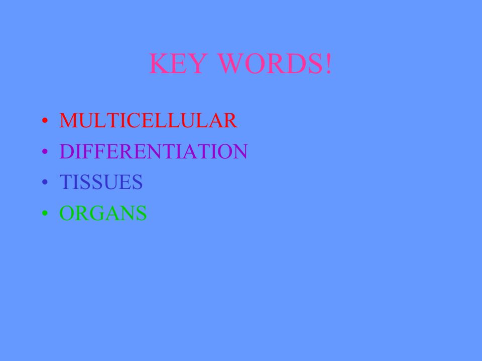 What is an ORGAN. Different tissues are grouped together to make an ORGAN.
