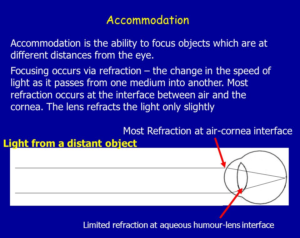 Accommodation Accommodation is the ability to focus objects which are at different distances from the eye. Focusing occurs via refraction – the change