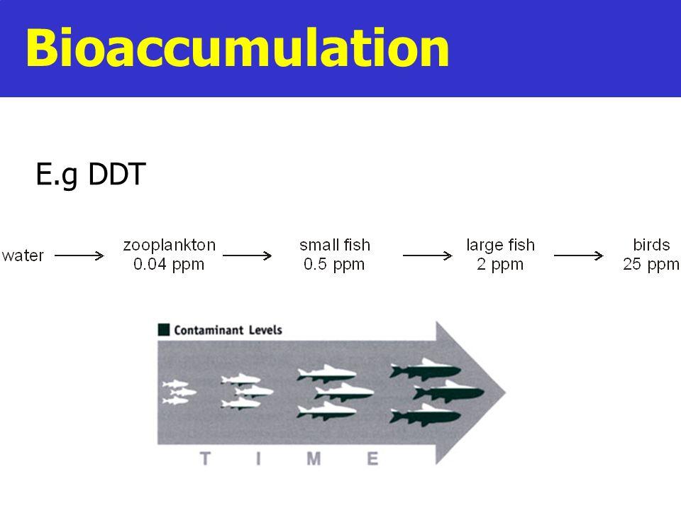 Bioaccumulation E.g DDT