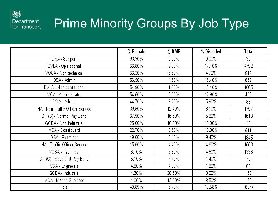 Prime Minority Groups By Job Type