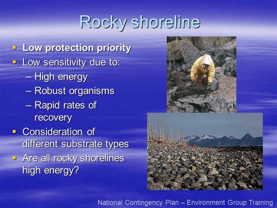 Rocky shoreline Low protection priority Low protection priority Low sensitivity due to: Low sensitivity due to: –High energy –Robust organisms –Rapid