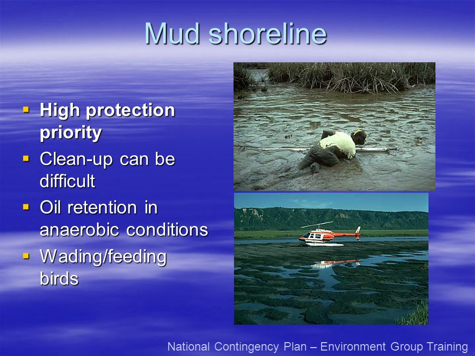 Mud shoreline High protection priority High protection priority Clean-up can be difficult Clean-up can be difficult Oil retention in anaerobic conditions Oil retention in anaerobic conditions Wading/feeding birds Wading/feeding birds National Contingency Plan – Environment Group Training