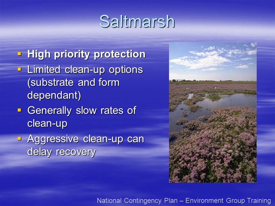 Saltmarsh High priority protection High priority protection Limited clean-up options (substrate and form dependant) Limited clean-up options (substrat