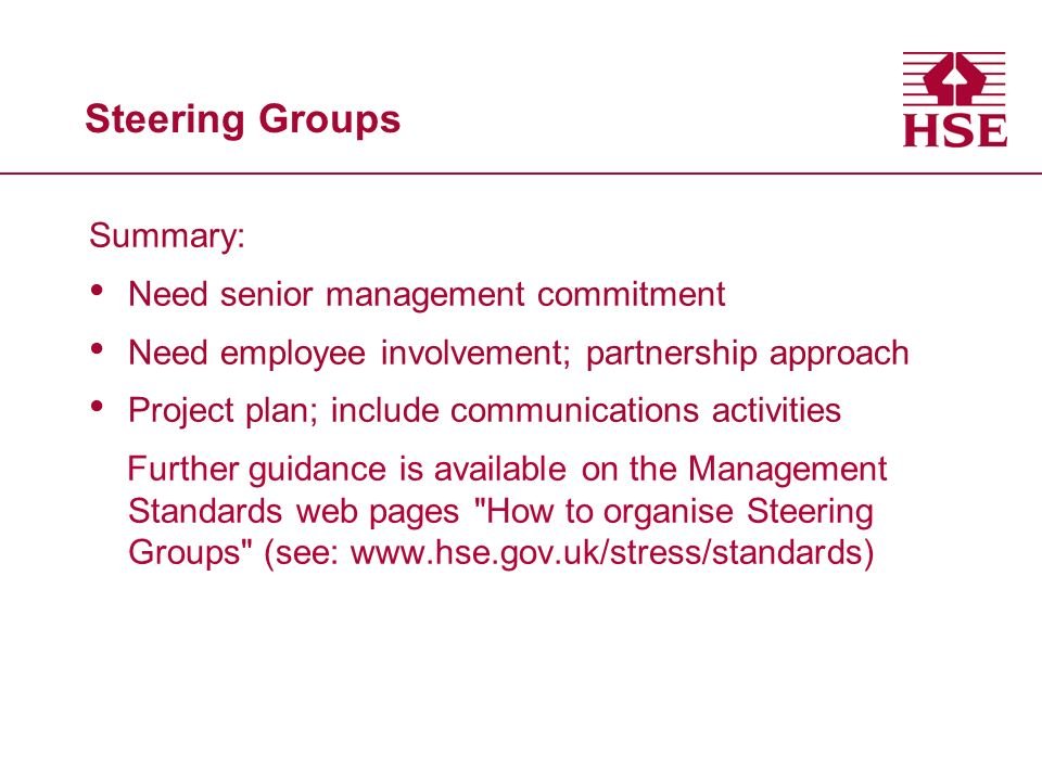 Steering Groups Summary: Need senior management commitment Need employee involvement; partnership approach Project plan; include communications activi