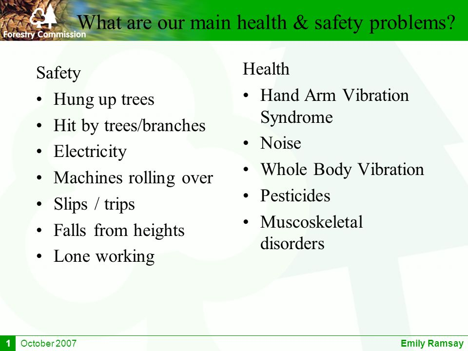 October 2007Emily Ramsay1 What are our main health & safety problems.