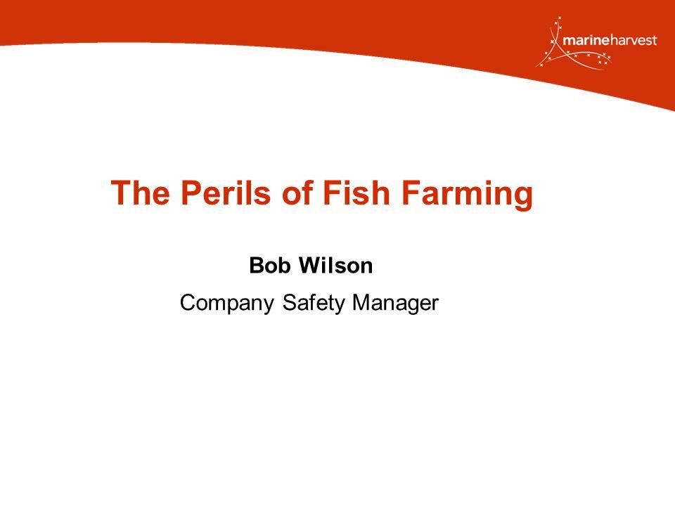 The Perils of Fish Farming Bob Wilson Company Safety Manager