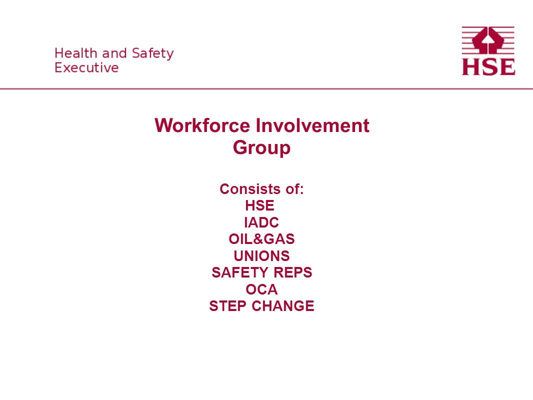 WORKFORCE INVOLVEMENT GROUP (WIG) OBJECTIVES Promote workforce involvement in H&S in the workplace.