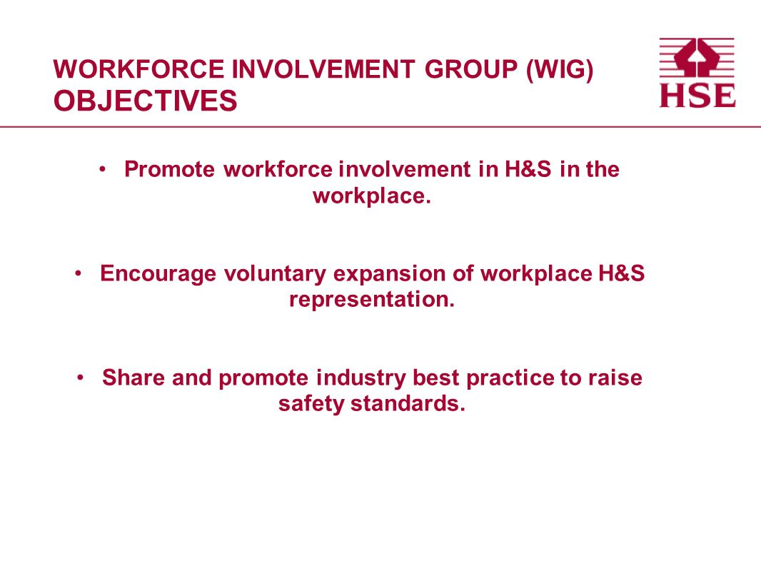 Workforce Involvement Presentation on the SI 971 Inspection Programme Nicky Elphinstone (WIG MEMBER) ESS Safety Rep