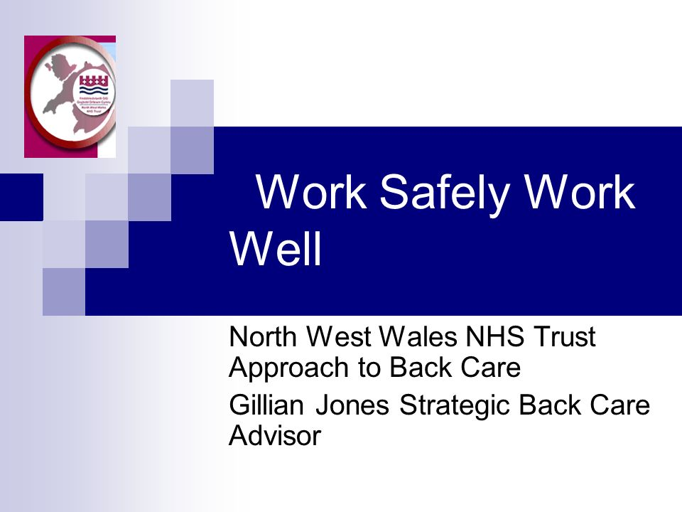 Work Safely Work Well North West Wales NHS Trust Approach to Back Care Gillian Jones Strategic Back Care Advisor