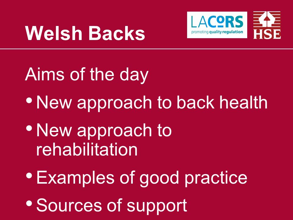 Aims of the day New approach to back health New approach to rehabilitation Examples of good practice Sources of support