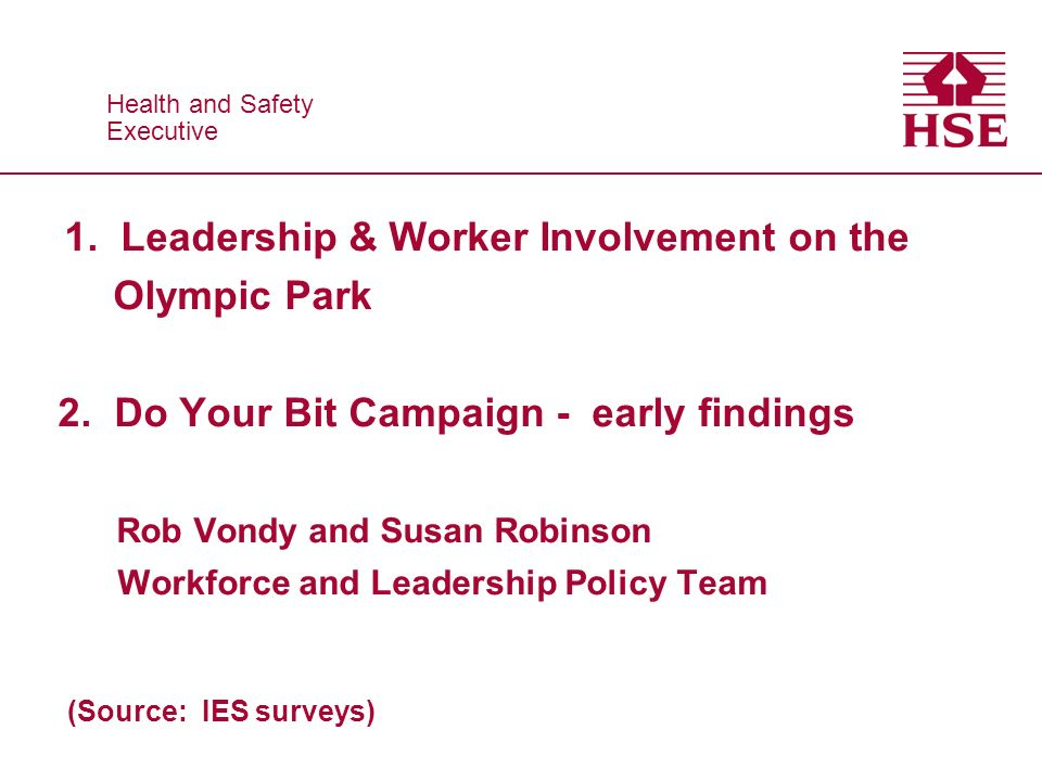 Health and Safety Executive Health and Safety Executive 1. Leadership & Worker Involvement on the Olympic Park 2. Do Your Bit Campaign - early finding