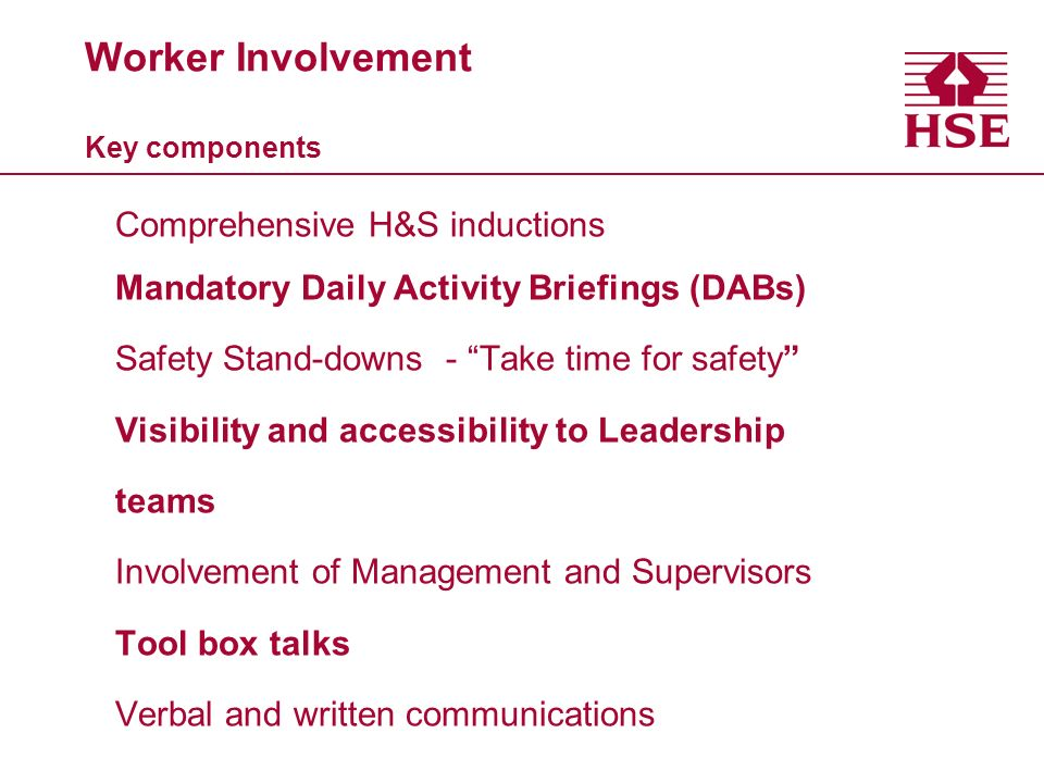 Worker Involvement Key components Comprehensive H&S inductions Mandatory Daily Activity Briefings (DABs) Safety Stand-downs - Take time for safety Vis