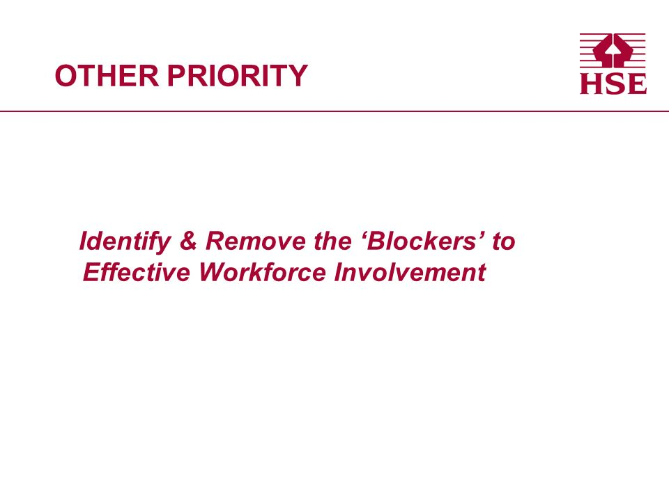 OTHER PRIORITY Identify & Remove the Blockers to Effective Workforce Involvement