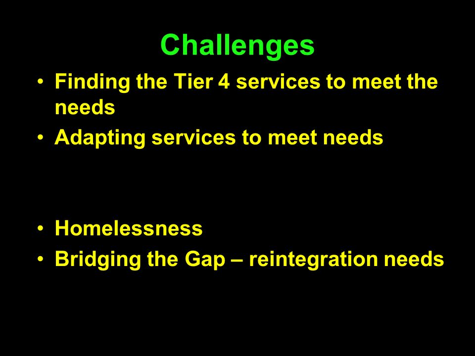 Challenges Finding the Tier 4 services to meet the needs Adapting services to meet needs Homelessness Bridging the Gap – reintegration needs