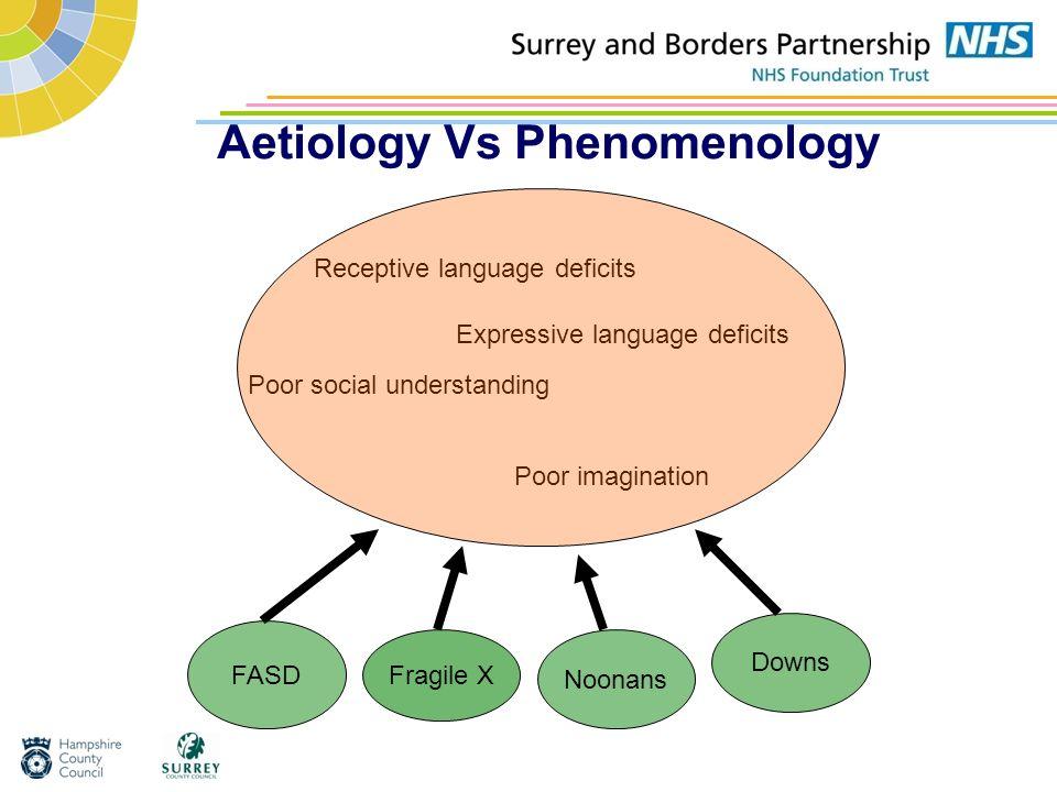 Aetiology Vs Phenomenology Poor social understanding Receptive language deficits Expressive language deficits Poor imagination FASD Fragile X Noonans