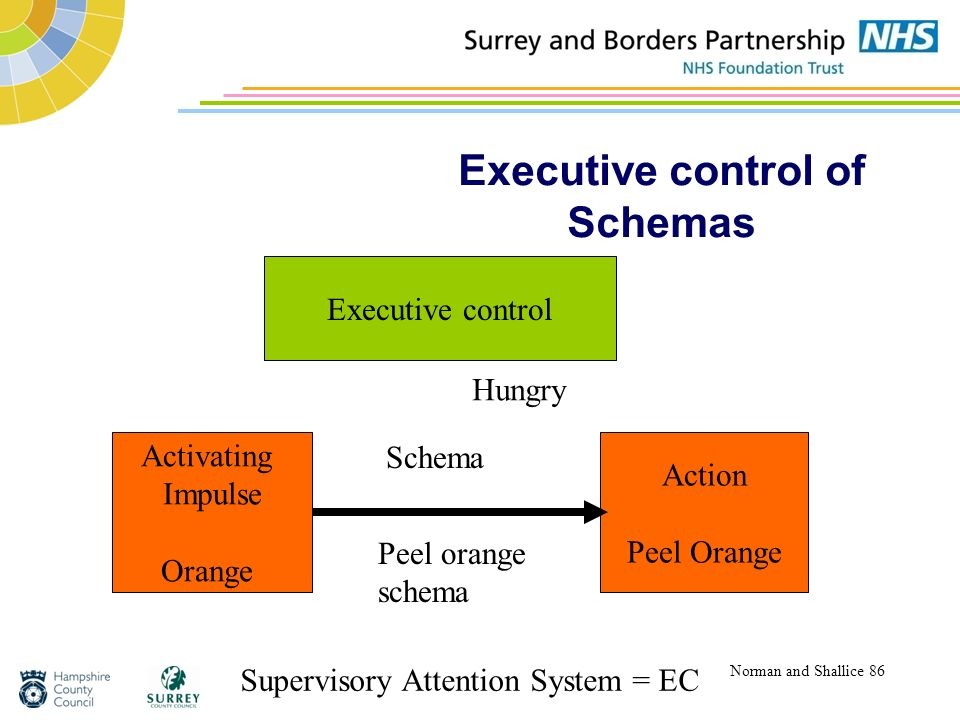 Executive control of Schemas Norman and Shallice 86 Activating Impulse Orange Action Peel Orange Executive control Schema Peel orange schema Superviso