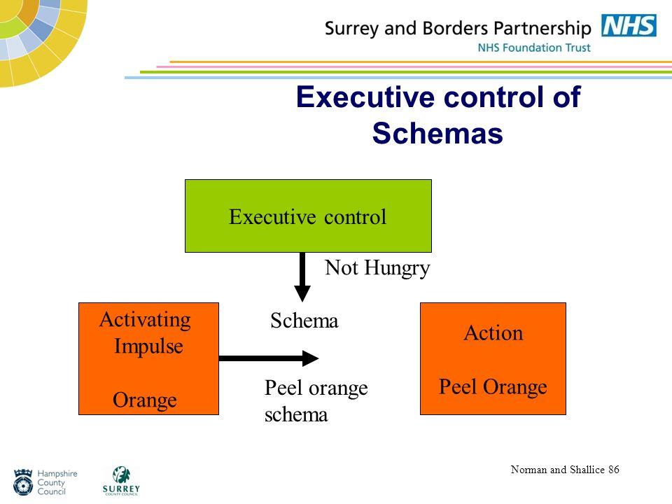 Executive control of Schemas Norman and Shallice 86 Activating Impulse Orange Action Peel Orange Executive control Schema Peel orange schema Not Hungr