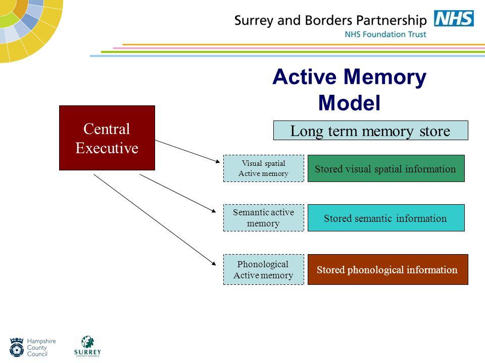 Active Memory Model Central Executive Visual spatial Active memory Semantic active memory Phonological Active memory Stored visual spatial information