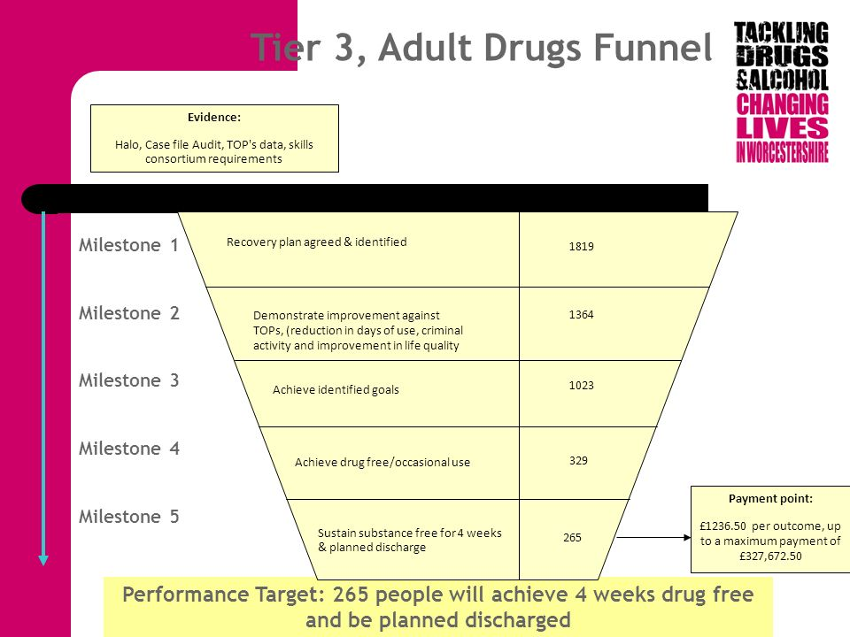 Domains of outcomes Young people – tier 2 and 3 funnels Adult drugs – tier 2 funnel, tier 3 PSI and a prescribing funnel and needle exchange funnel Adult alcohol – tier 2 and tier 3 funnels Family services funnel