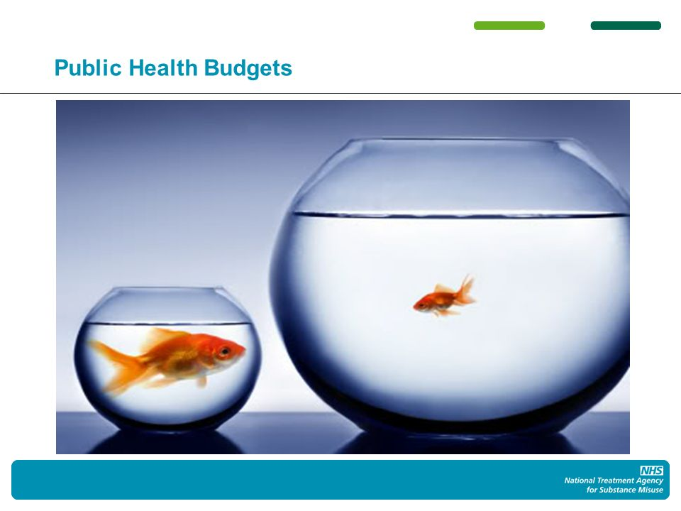 16 Public Health Budgets
