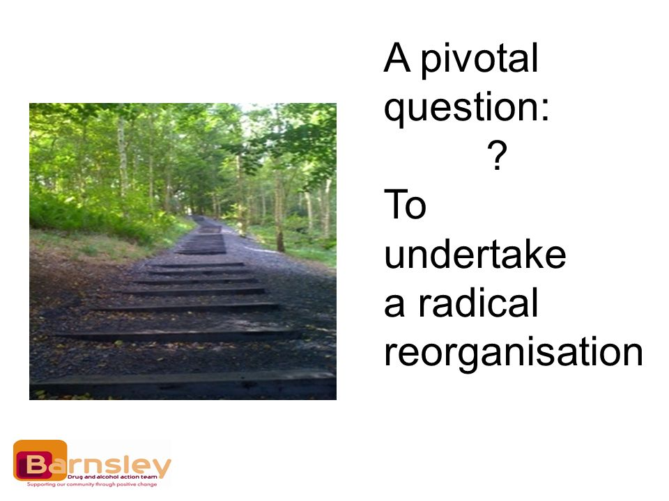 A pivotal question: To undertake a radical reorganisation