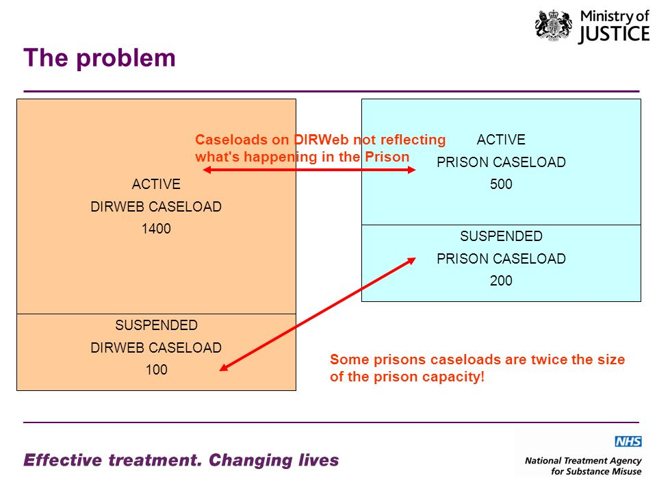 The problem ACTIVE DIRWEB CASELOAD 1400 ACTIVE PRISON CASELOAD 500 SUSPENDED DIRWEB CASELOAD 100 SUSPENDED PRISON CASELOAD 200 Caseloads on DIRWeb not reflecting what s happening in the Prison Some prisons caseloads are twice the size of the prison capacity!