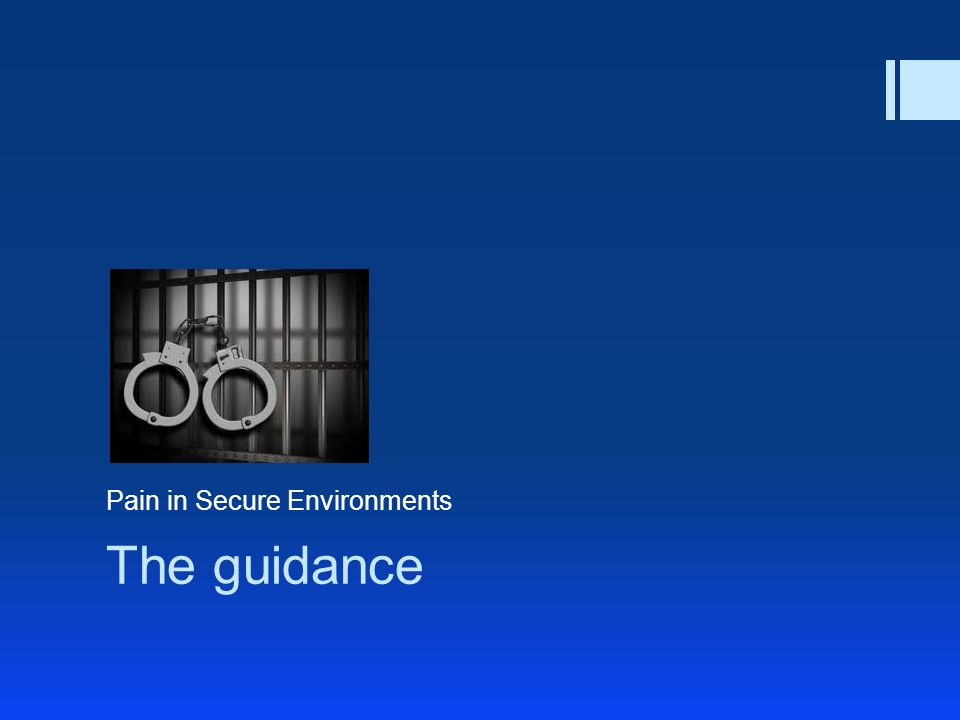 The guidance Pain in Secure Environments