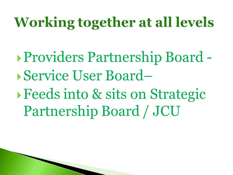 Providers Partnership Board - Service User Board– Feeds into & sits on Strategic Partnership Board / JCU
