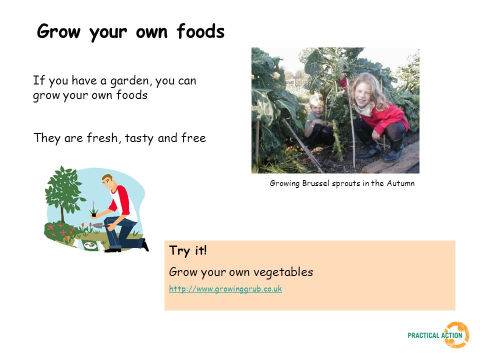 Grow your own foods If you have a garden, you can grow your own foods They are fresh, tasty and free Try it! Grow your own vegetables http://www.growi