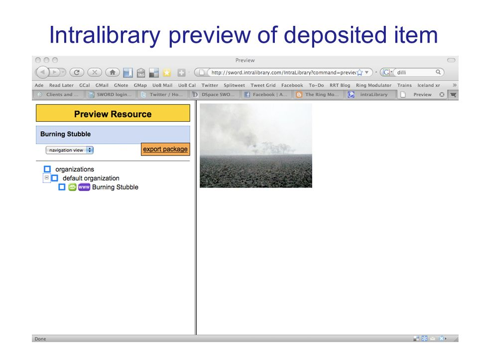 Intralibrary preview of deposited item