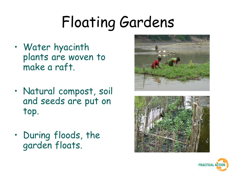 Floating Gardens Water hyacinth plants are woven to make a raft. Natural compost, soil and seeds are put on top. During floods, the garden floats.
