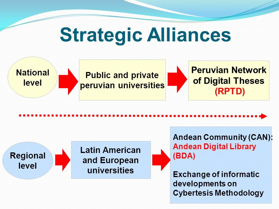 Strategic Alliances National level Public and private peruvian universities Peruvian Network of Digital Theses (RPTD) Regional level Latin American an