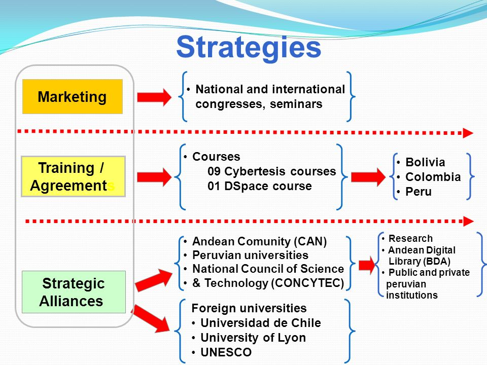 Strategies Marketing National and international congresses, seminars Training / Agreements Courses 09 Cybertesis courses 01 DSpace course Strategic Al