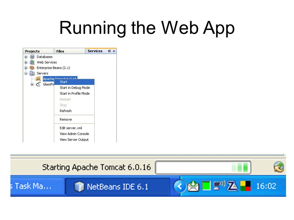 Running the Web App