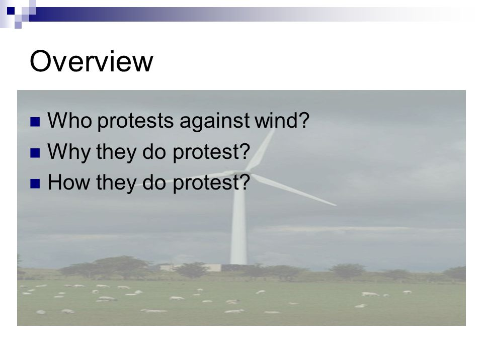 Overview Who protests against wind? Why they do protest? How they do protest?