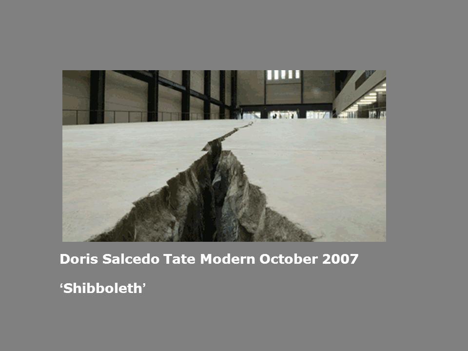 Doris Salcedo Tate Modern October 2007 Shibboleth