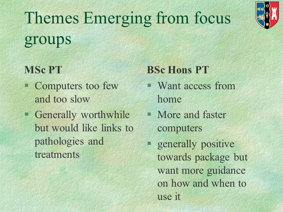 Themes Emerging from focus groups MSc PT §Computers too few and too slow §Generally worthwhile but would like links to pathologies and treatments BSc Hons PT §Want access from home §More and faster computers §generally positive towards package but want more guidance on how and when to use it