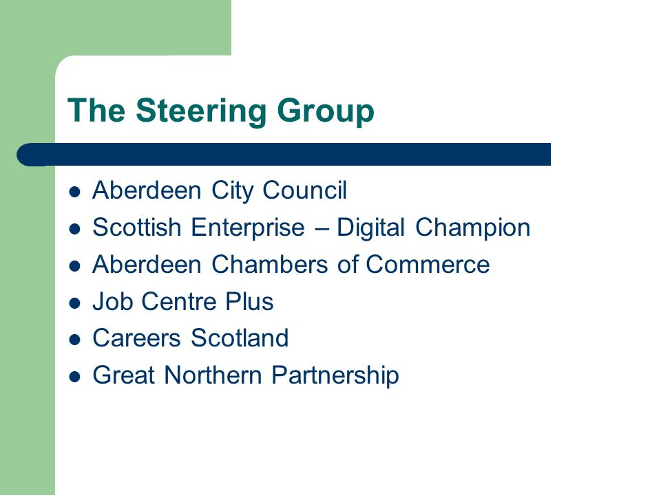 The Steering Group Aberdeen City Council Scottish Enterprise – Digital Champion Aberdeen Chambers of Commerce Job Centre Plus Careers Scotland Great Northern Partnership