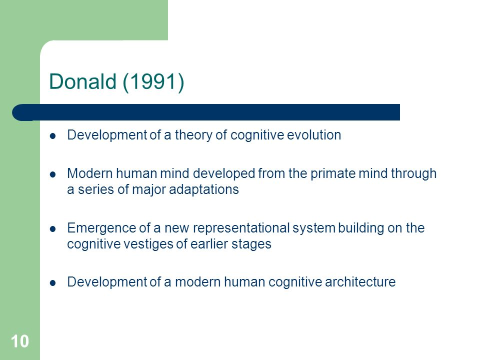 10 Donald (1991) Development of a theory of cognitive evolution Modern human mind developed from the primate mind through a series of major adaptations Emergence of a new representational system building on the cognitive vestiges of earlier stages Development of a modern human cognitive architecture