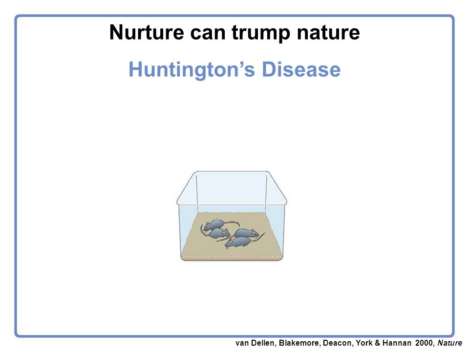 van Dellen, Blakemore, Deacon, York & Hannan 2000, Nature Huntingtons Disease Nurture can trump nature