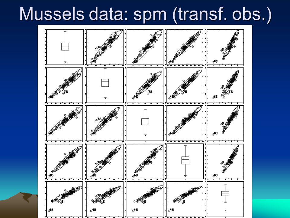 Mussels data: spm (transf. obs.)